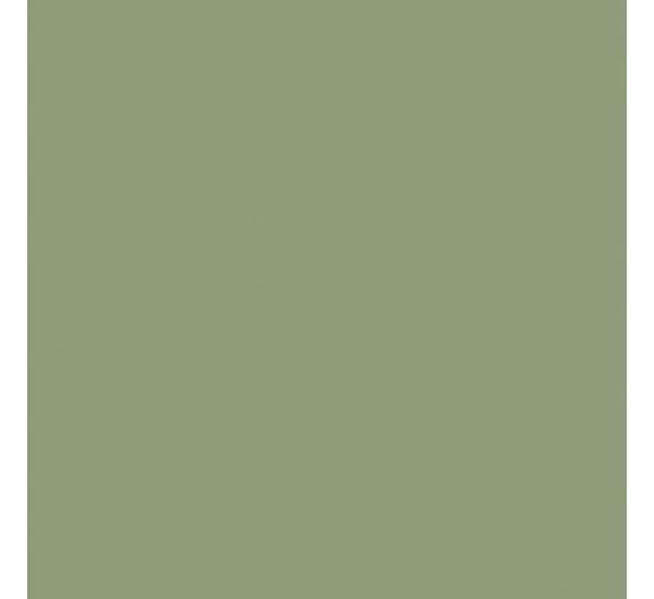 6021 Бледно-зеленый.